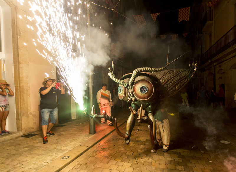 Besties a les festes de Sant Roc 2016 Besties Bug Catalonia Catalunya Celebration Culture Danger Fire Firerun Fireworks Illuminated Light And Shadow Men Motion Night Night Lights Nightphotography Outdoors Party Time! Performance Performer  Sant Roc Stage - Performance Space Street Traditional