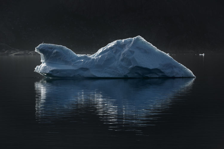 Blue iceberg drifting in Prins Christian Sound, Greenland. Global Warming Greenland Ice Arctic Bird Blue Climate Change Cold Temperature Floating On Water Frozen Glacier Ice Iceberg Iceberg - Ice Formation Landscape Melting No People Old Prince Christian Sund Reflection Scenics - Nature Seascape Tranquil Scene Water Winter