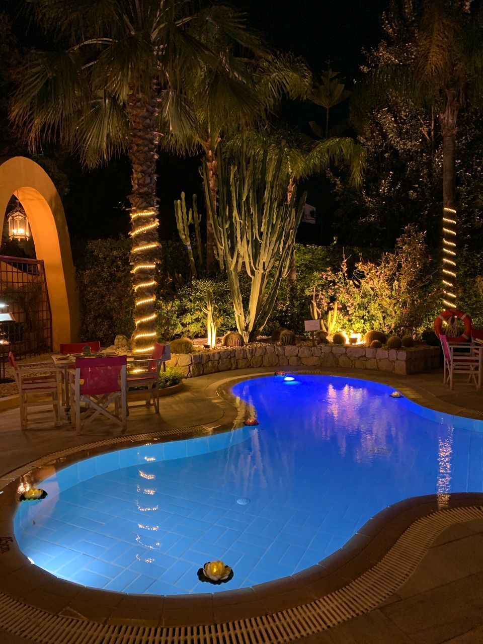 swimming pool, pool, water, tree, plant, nature, luxury, illuminated, night, no people, wealth, outdoors, absence, front or back yard, poolside, hot tub, reflection, relaxation, tranquility