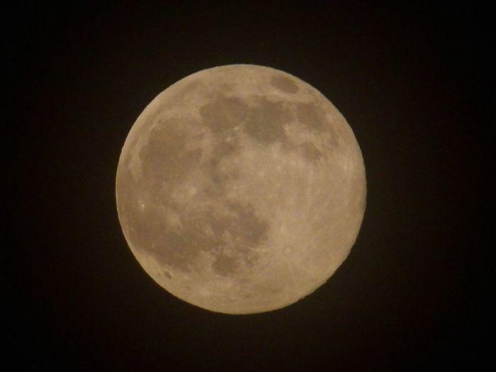 ストロベリームーン 月齢15.34 満月 望月 十五夜 Pentaxxg1