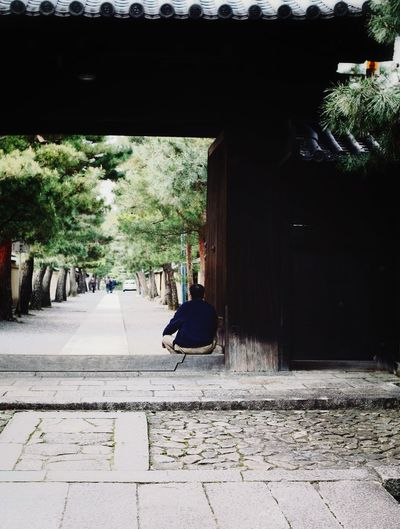 Backshot Back Gate Day Adult Architecture Built Structure One Man Only Only Men People Tree Adults Only 大徳寺 Religious Architecture Japan Kyoto 京都 EyeEmBestPics Still Life Buddist Temple Light Outdoors Roof Streetphotography Nature Long Goodbye Break The Mold Art Is Everywhere TCPM The Photojournalist - 2017 EyeEm Awards The Portraitist - 2017 EyeEm Awards The Street Photographer - 2017 EyeEm Awards The Great Outdoors - 2017 EyeEm Awards Neighborhood Map Place Of Heart
