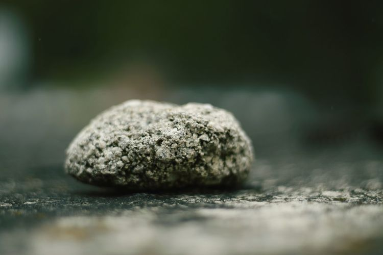 Close-up of rock on field