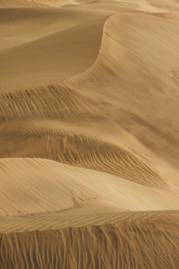 Scenic view of sand dunes at desert