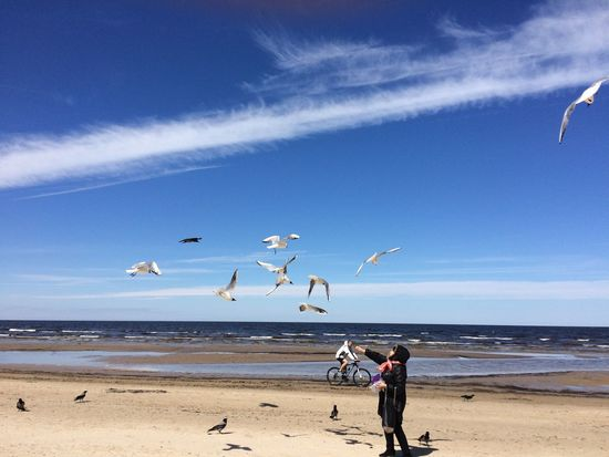 Beach Sea Horizon Over Water Nature Real People Sky Water Day Flying Beautiful Riga Spring Jurmala Latvia Sun Sea And Sky