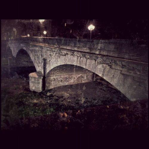El Pont de Pedra sortint del Gironaemociona