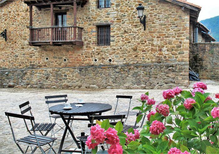 Cantabria Bárcena Mayor Flowers Plant Tranquil Scene Idyllic Tranquility Calm Rural EyeEm Gallery El Tiempo Detenido No People Hi!! Scenics Hello World EyeEm