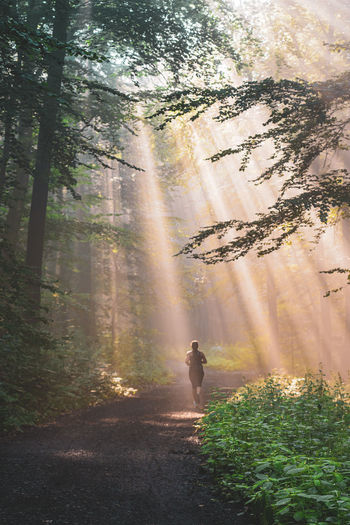 Rear view of girl running on road amidst trees in forest