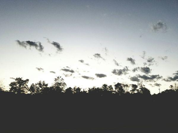 Clouds And Sky Cloudy Trees Trees And Sky Tree Line Treeline Dusk