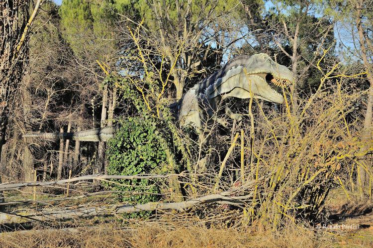 Un T-rex a caccia nella Foresta A Tyrannosaurusrex hunting in the Forest Dinosauro Dinosauri Dinosaur Dinosaurs Tirannosauro Tyrannosaurus