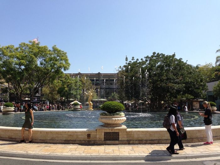 Taking Photos Free Glendale Summer #california