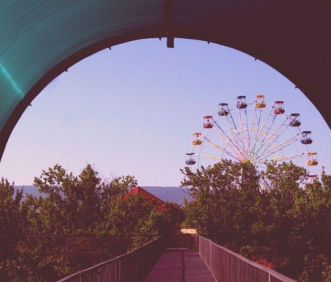 Photolikes #love #cute #photo #likes #likeforlikes #likeforfollow #me #followfollowfollow #likesforlikes #likeforshoutout #trocolikes #like #beautiful #frases #instalike #sdv #instagood #follow #followmeplease #insta #like10like #instalove #color #hmu #pe Photography Photo First Eyeem Photo Summer Summertime Mountains And Sky Trees Parks