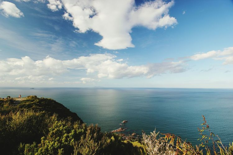 New Zealand December 2015 Beautiful Day Bay Of Plenty Sea And Sky Seascape