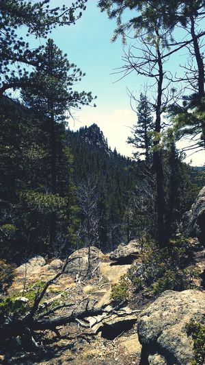 beautiful view from my hike at golden gate national park Taking Photos Enjoying Life Colorado Photography