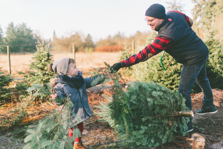 A father and son choosing a Christmas tree at the tree farm. Holiday Moments Tree christmas tree Christmas Tree Farm Father Son Family Christmas Child Togetherness Bonding Parent Warm Clothing Winter