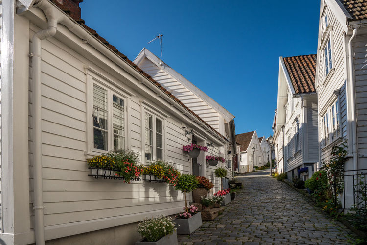 Stavanger - Norway Norway Stavanger Stavanger Norway Alley Architecture Building Building Exterior Built Structure City Clear Sky Day Direction Flower Flower Pot Flowering Plant Nature No People Outdoors Plant Potted Plant Residential District Sky Street The Way Forward Transportation