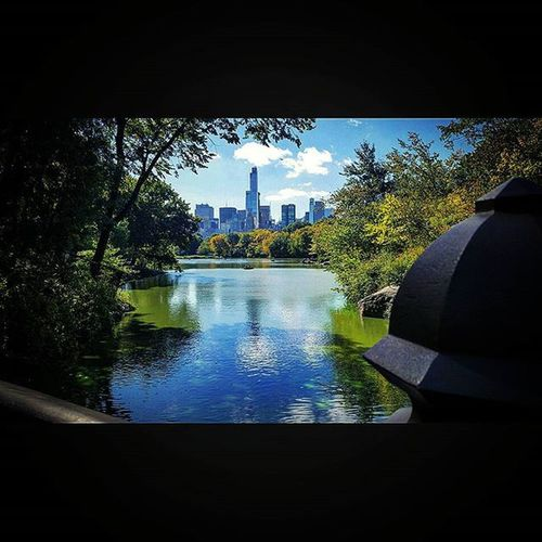 Through a clearing from the bridge in Central Park we saw the Urban Jungle ahead... CentralPark NYC Newyorkcity Newyork Manhattan Lake Pond Unitedstates USA City Clearing Rowingboat America Park Citypark Tourist Travel Traveling Bluesky Reflections
