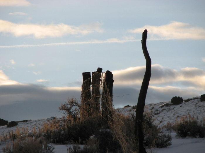 Showcase: January Fences & Beyond Snowscape Eye4photography  Winter Landscape Deserted Abandoned Places Wyoming USA Secluded  Landscapes Wyomingphotographer
