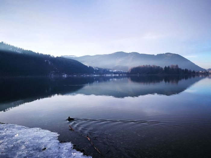 Alps Schliersee Schliersee, Bayern Sky And Clouds Water Reflections Blue Lake View Mountain Lake Mountain Lake In Winter Nature No People Outdoors Panorama View Reflections Reflections In The Water Reflections Lake Sky Water Shades Of Winter