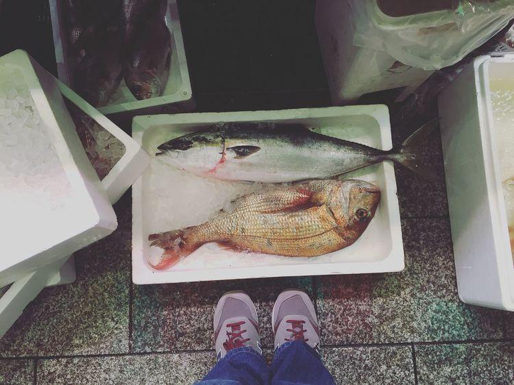 Fish at FishMarket Kyoto Japan Earlymorning