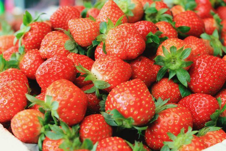 Newly picked strawberries from the famous La Trinidad strawberry Farm. Fresh Fruitphotography Benguet Philippines Latrinidadbenguet Fruit Red Healthy Lifestyle Strawberry Close-up Sweet Food Farmer Market Berry Fruit Juicy Antioxidant Ripe Dessert
