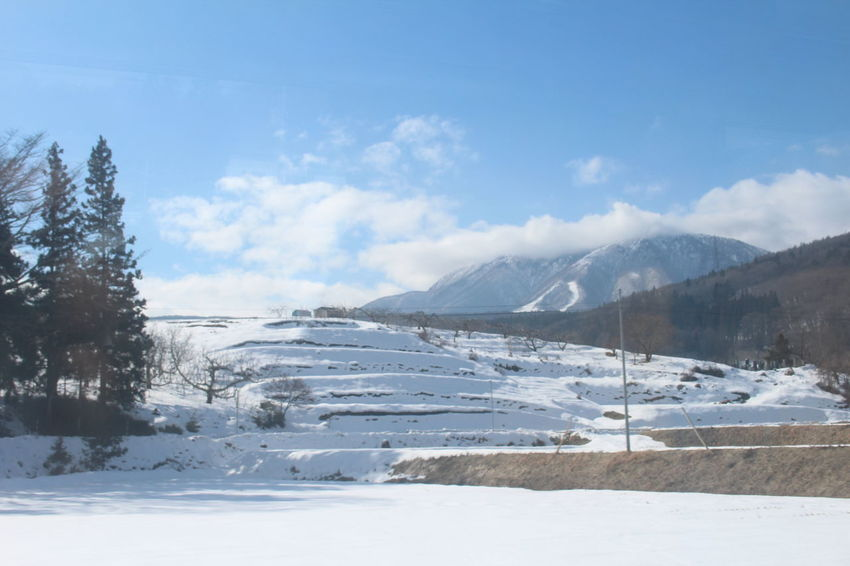 Tourist Attraction  Japan Photography Snow ❄ Wintertime Skiing Niigata-shi Traveling White Background Outdoors