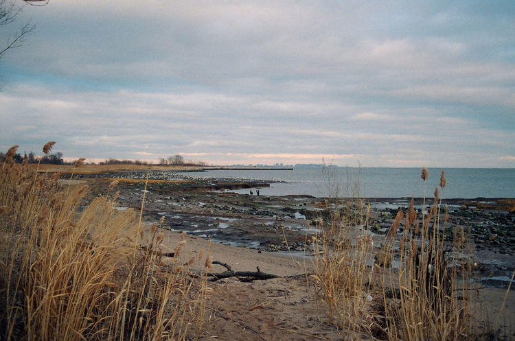 Beach Calm Cloud - Sky Cloudy Coastline Film Photography Grass Horizon Over Water Idyllic Nature New York City No People Ocean Outdoors Remote Scenics Sea Shore Staten Island Sunset Tranquil Scene Tranquility Water Wooden Post