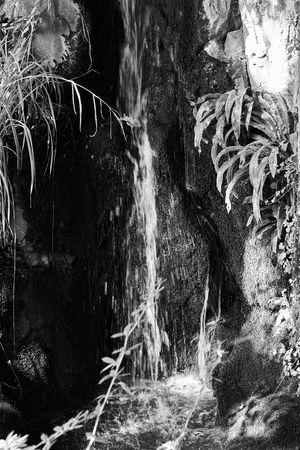 zen Waterfall Water A Moment Of Zen... Silence Peace Tranquility Tranquil Scene Contrast Monochrome Monochrome Photography Lucky's Monochrome Black And White Black & White EyeEm Best Shots - Black + White Lucky's Mood Mood EyeEm Gallery Shootermag Fine Art Photography Nature Beauty In Nature Eye4photography  Emptiness Lucky's Memories Melancholy