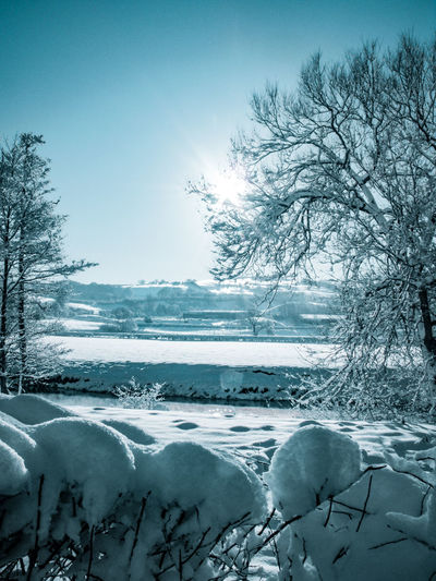 Winter wonderland in Wales River Severn Hafren Sun Shiny Winter Wonderland Wales UK Fields Fieldscape River View Meadows Valley Blue Trees Snow On Trees Snow On The Ground Snow On Branches Snowcapped Scenics Scenics - Nature Snow Cold Temperature Water Winter Tree Frozen Ice Deep Snow Shore Powder Snow Snowdrift