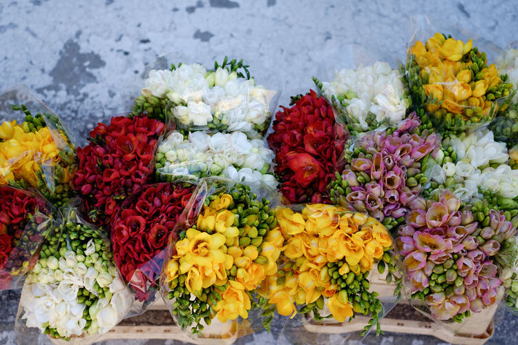 High angle view of various flowers for sale