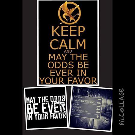 Hunger games foreverPicCollage  Hungergames Peeta Katniss panemdistrict12bookporn books booklover geekpresidentsnowcatchingfiremockingjay