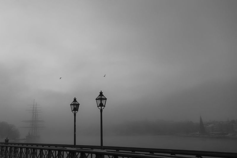 Stockholm Winter Af Chapman  Animal Themes Architecture Beauty In Nature Bird Bridge - Man Made Structure Building Exterior Built Structure Day Flying Fog Nature No People Outdoors Railing Sea Skeppsholmen Sky Street Light Travel Destinations Water