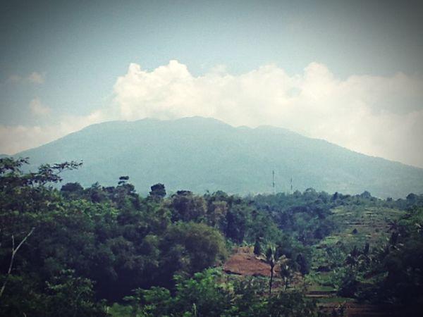Camping ing being a]g adventurous]s Getting Some Rest Mountain View Mount Gede Pangrango Gunung Gede Pangrango