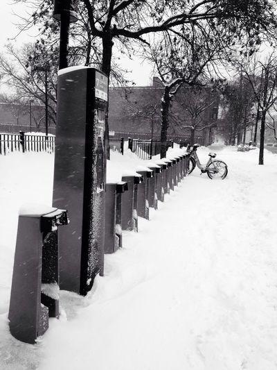Divvy bike rack snowed in