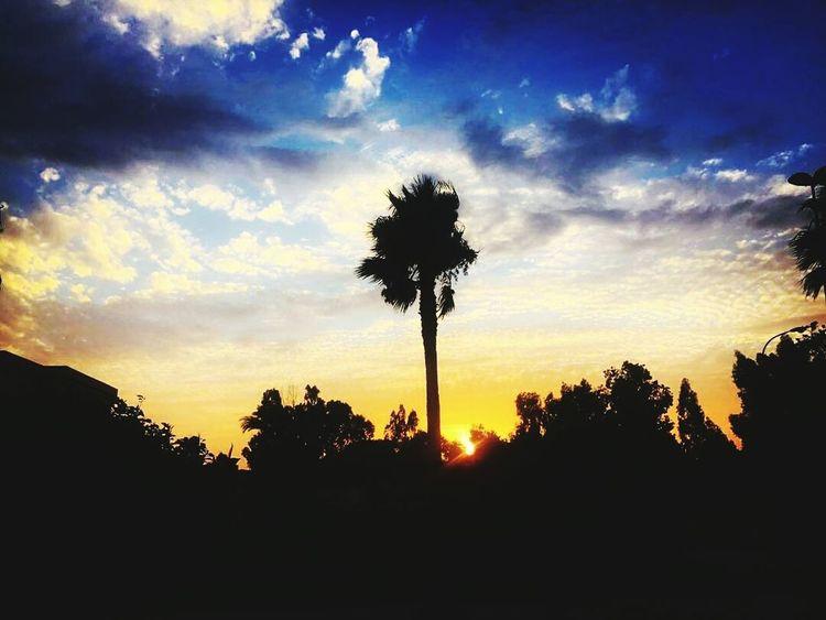 Benimellal Sunset Summer
