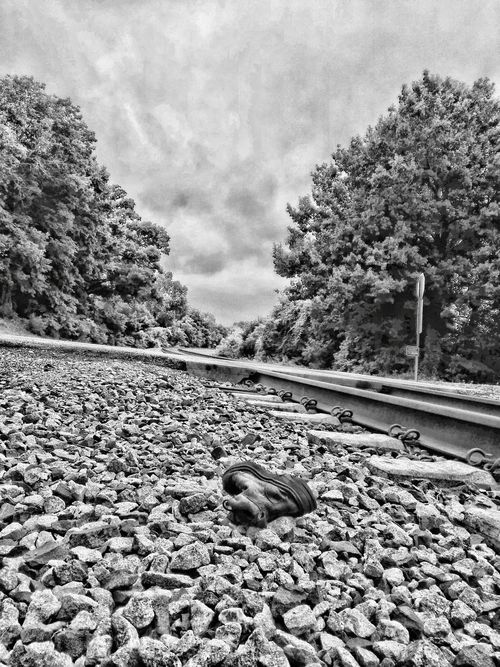 Eyeem Market Hdr Collections Showcase July HDR EyeEm Gallery EyeEm Nature Lover New On Eyeem Landscapes Train Tracks Train Tracks Through The Country My Point Of View New On Market TRENDING  Landscape Fresh On Eyeem  EyeEm USA  Hdr Photography Hdr_Collection Nature Shoe Fetish Black And White Photography