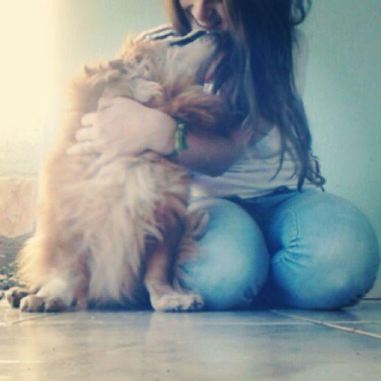 Amor que não tem fim Dog Sheik Amorpratodavida Amorincondicional