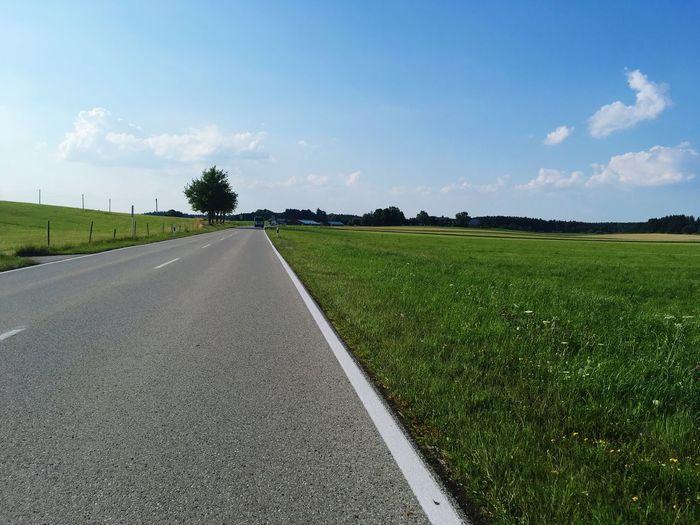 Plant Road The Way Forward Transportation Nature