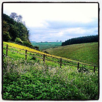 Thixendale Eastyorkshire Northyorkshire Wolds yorkshirewolds chalklandsway northwoldsway thewalkingcaveman
