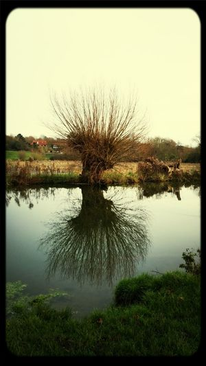 Nature_collection Morning Rituals Follow4follow Constablecountry reflections