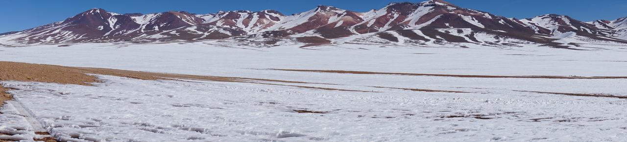 Bolivia Uyuni, Bolivia Zorrillo Fox Laguna Blanca Laguna Cañapa Laguna Colorada Panoramic Landscape Panoramic Photography Stone Tree Uyuni Potosi Viajeabolivia Zorro Árbol De Piedra