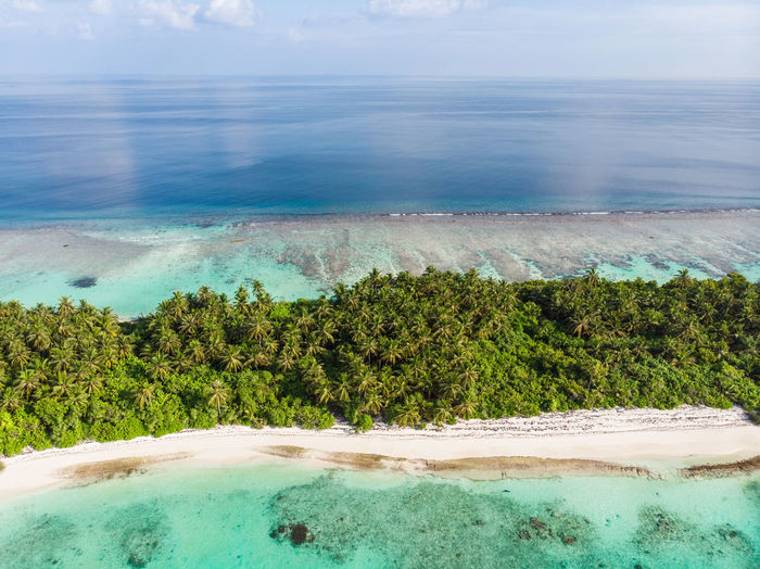 Maldives Island seen from above Drone  Droneshot Aerial View Island Tropical Maldives Blue Water Beach Waves Crashing From Above  Palm Tree Palm Trees Paradise Blue Green Bikini No People Waves, Ocean, Nature Islands Unspoiled Nature Nature Landscape Landscapes Paradise Beach Perfection