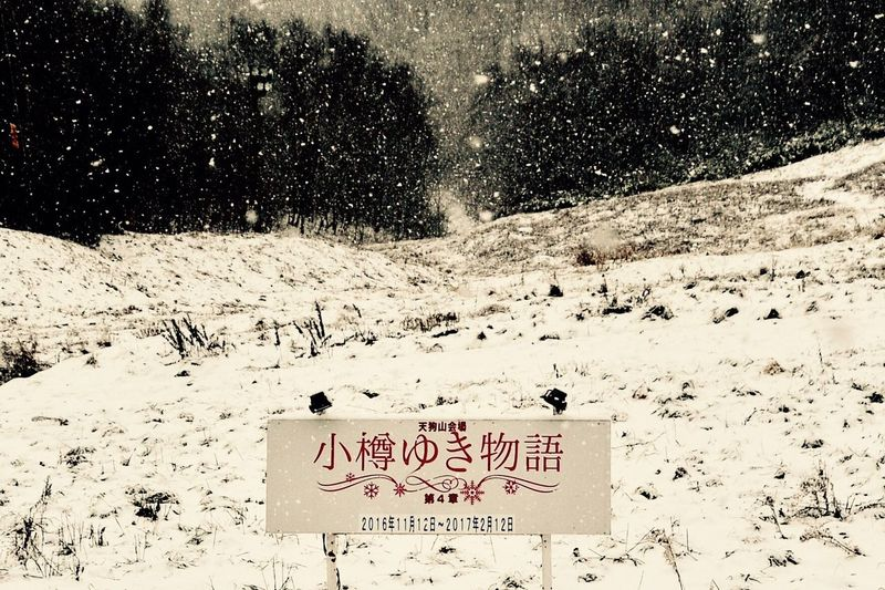 Snow ❄ Snow Fall No People Communication Winter Outdoors Cold Temperature Snow Nature