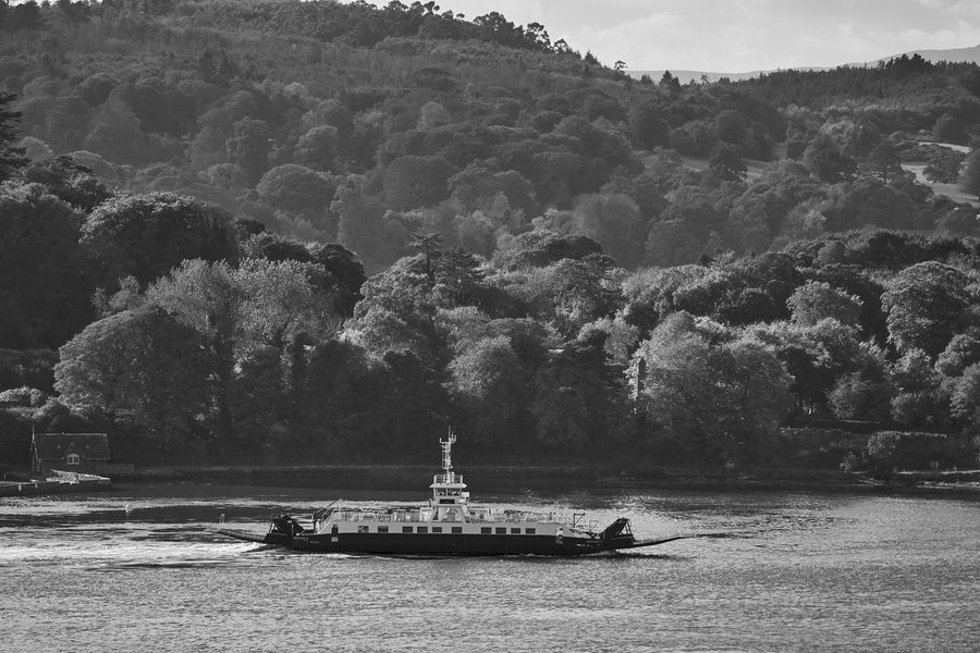 Beauty In Nature Boat Boating Calm Day Fé Lush Foliage Mode Of Transport Mountain Nature Nautical Vessel Non-urban Scene Outdoors Sailing Scenics Solitude Strangford Tourism Tranquil Scene Tranquility Transportation Tree Water Water Vehicle Waterfront