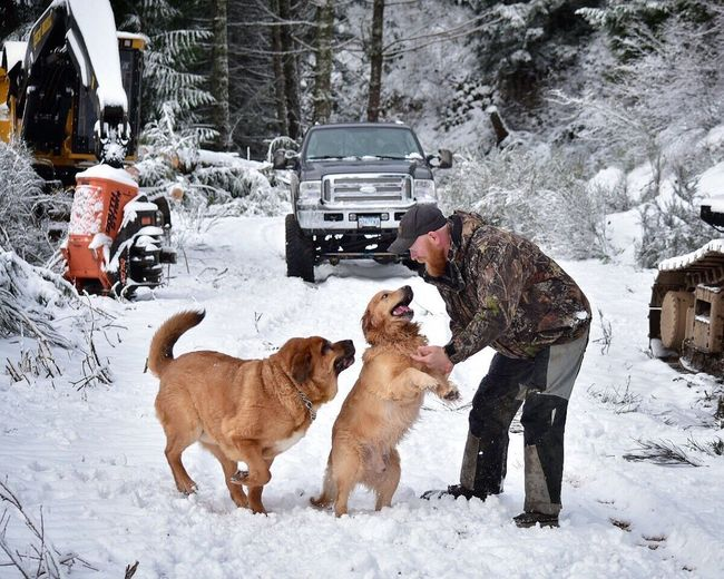 Winter Snow Cold Temperature Dog Animal Themes Pets Domestic Animals Weather Car Togetherness Nature Tree Warm Clothing Adult Day Outdoors Snowing Adults Only People Only Men Pet Photography  Dogs Of EyeEm Outside Photography Snow ❄ Snow Covered