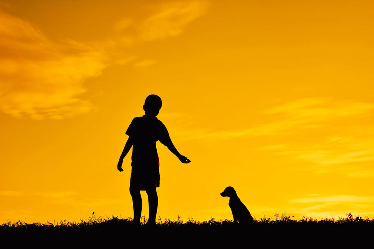 Silhouette Boy With Dog On Field Against Sky During Sunset