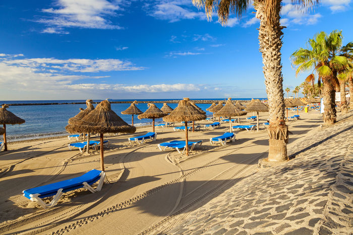 los cristianos beach Beach Beauty In Nature Day Lounge Chair Luxury Nature No People Outdoors Palm Tree Sand Scenics Sea Sky SPAIN Summer Sunlight Tenerife Tourism Tranquility Travel Travel Travel Destinations Tree Vacations Water