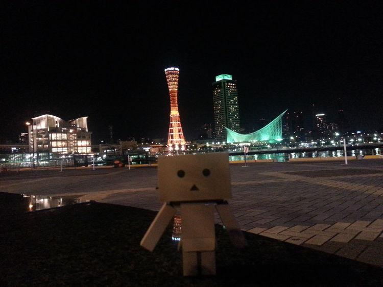 Danbo Night View Port Tower