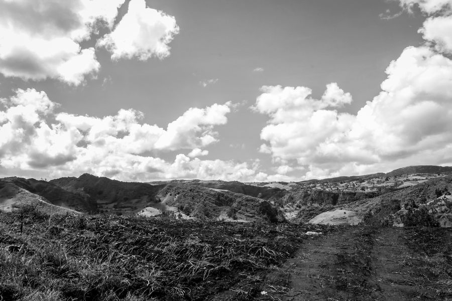 Creation Abandoned Places Boyacá, Colombia Colombia Grass Houses WeekOnEyeEm Animals Blackandwhite Canon Clouds Day Landsacpe Nature No People Outdoors White Wide Angle Black And White Friday