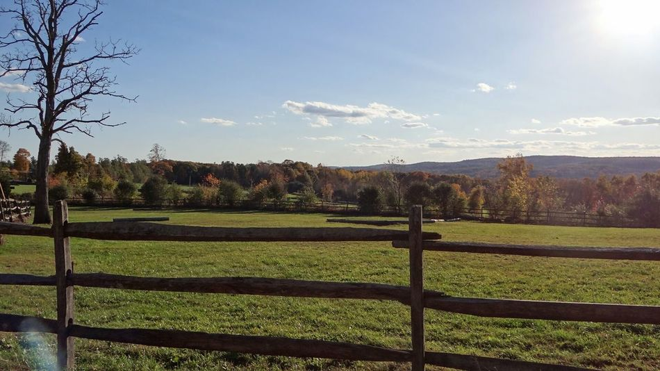 Landscape_photography Fences Fencepost Fenceline Fall Colors Fieldscape Farmland Bare Tree