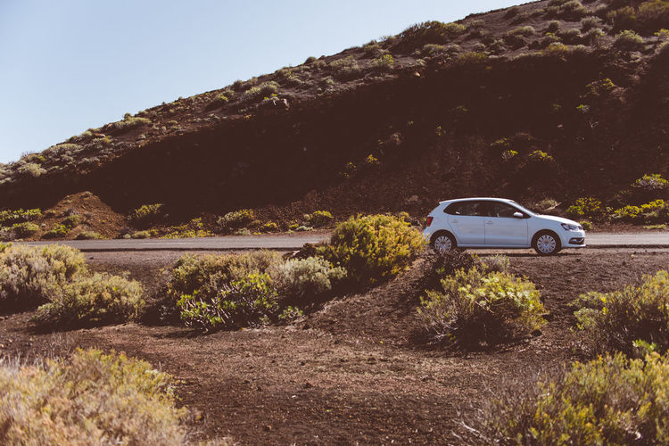 white car in volcanic landscape on La Palma, Canary Island, Spain Canarias Canary Islands La Palma Island Loneliness Car Environment Growth Land Land Vehicle Landscape Mode Of Transportation Motor Vehicle Mountain Nature Outdoors Plant Road Road Trip Scenic Landscapes Scenics - Nature Transportation Vegetation Vulcanic Landscape Vulcano White Car
